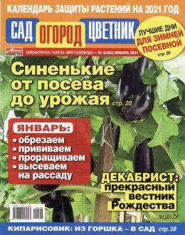 Сад Огород Цветник №6 январь 2021...