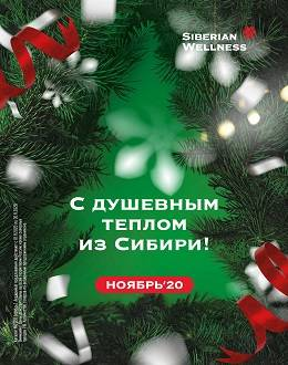 Сибирское здоровье каталог 11 2020...