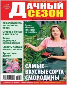 Дачный сезон №9 сентябрь 2021...