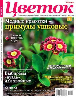 Цветок №2 январь 2021...
